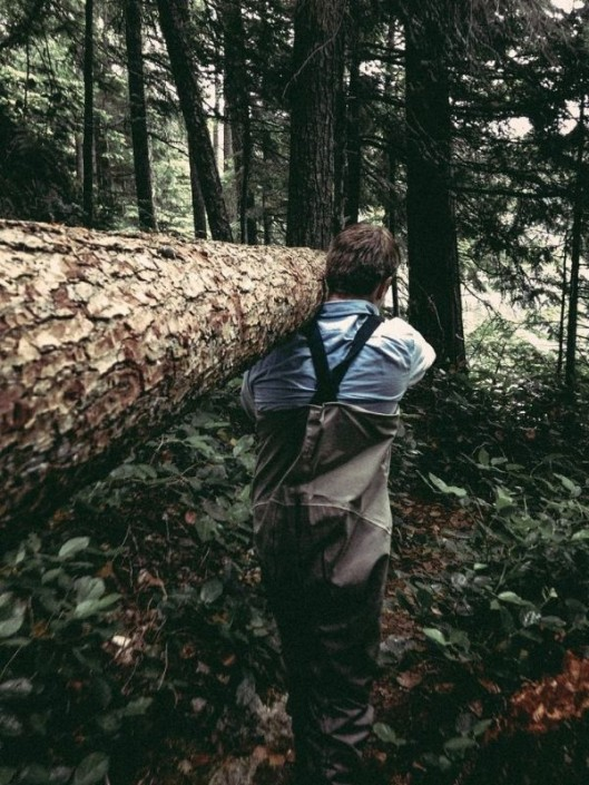 Logging in the woods
